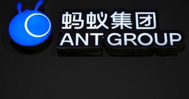 Fidelity halves valuation of Ant Group after Chinese crackdown
